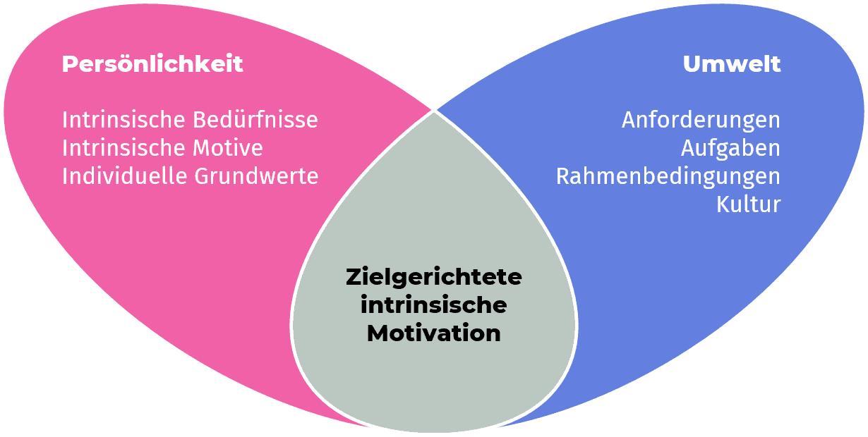 Zielgerichtete intrinsische Motivation als Überlappung von Persönlichkeit und Umwelt